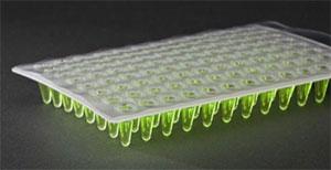 Adhesive Crystallography 9095-10103-100M